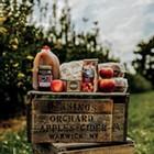 Fall Fun on the Farm: 10 Family-Friendly Farms to Visit this Autumn