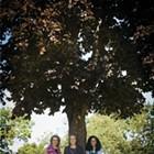Kingston Community Leaders: Jordan Scruggs, Mindy Kole, and Julissa Hernandez