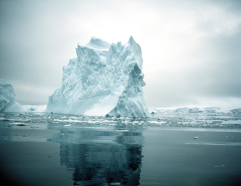 """""""We are a global community and our behaviors at home have long-term effects in Antarctica. Our actions, which increase carbon dioxides and impact the environment, are influencing the animals, their habitat and the potential for growth in the Antarctic ecosystem."""" - –Ari Friedlaender - PHOTO BY MADELINE COTTINGHAM"""