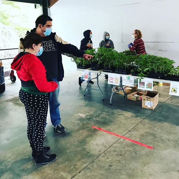 The Hudson Valley Children's Museum's waterfront farmer's market