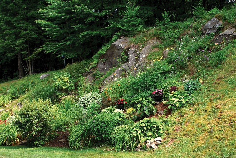 A rock garden in The Hills. - LARRY DECKER