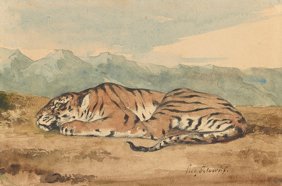 forecast_clark_delacroix_royal-tiger.jpg