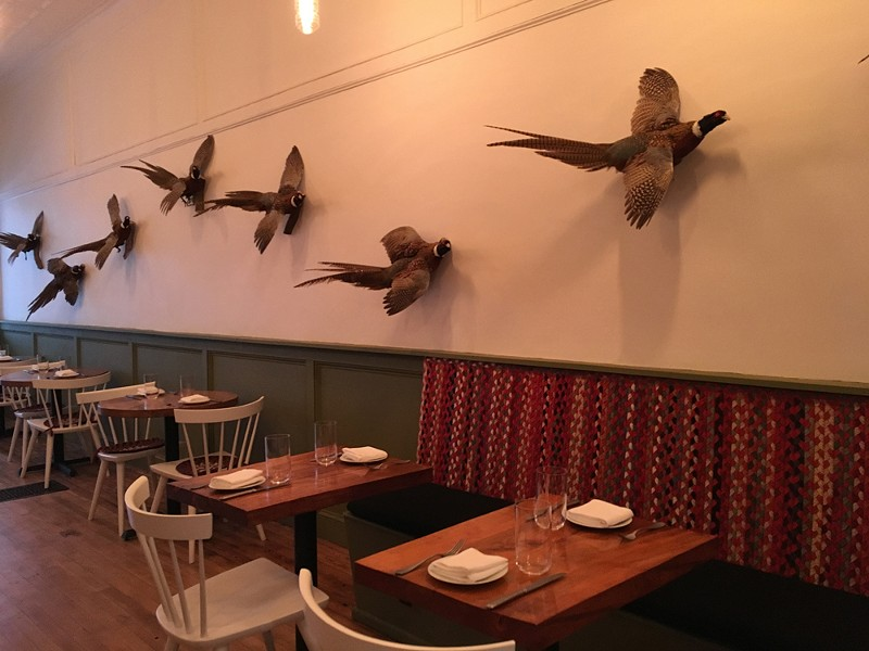 Taxidermied ringtail pheasant adorn the wall at Wilde Beest - MARIE DOYON