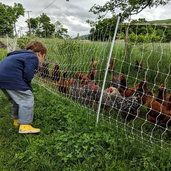 East Brook Community Farm