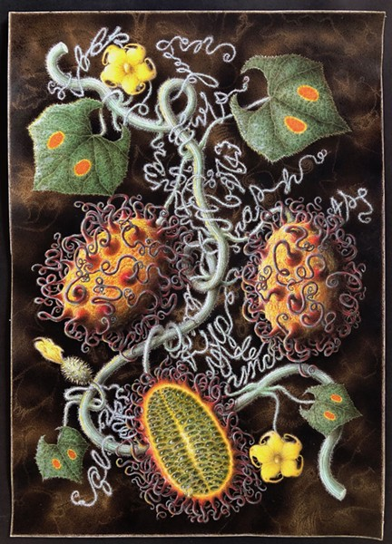Scott Serrano, Professor Hitchcock's Tentacled Jelly Mellon, 2018, ink and watercolor on watercolor paper, wood, courtesy the artist