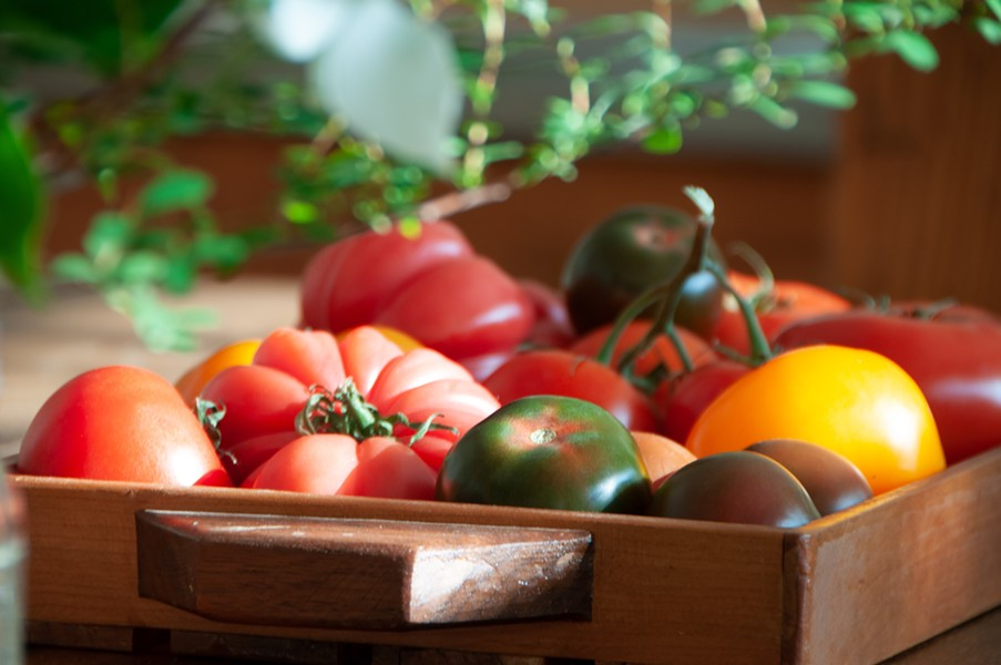 tomato-185_1_.jpg