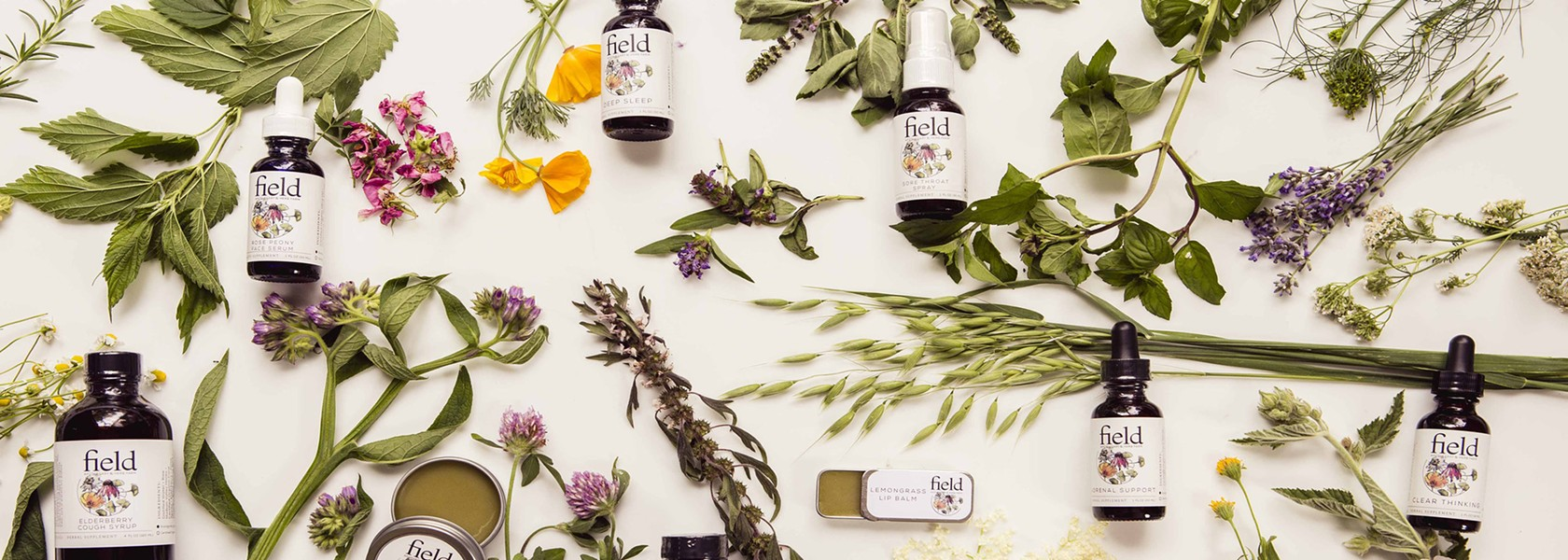 hudson_valley_apothecary_field_apothecary_herb_farm_july2017.jpg
