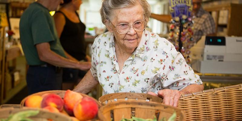 Growth Spurt: Newburgh & Cornwall Grandma Clearwater at Jones Farm in Cornwall. Karen Pearson