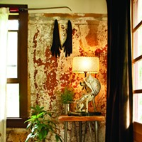 The Country Farmhouse Gets Creative Repurposing in Bloomington An exposed plaster wall in the entryway. Deborah DeGraffenreid