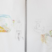 Kathy Ruttenberg's In Dreams Awake Watercolor studies of Fish Bowl. Photo: Fionn Reilly