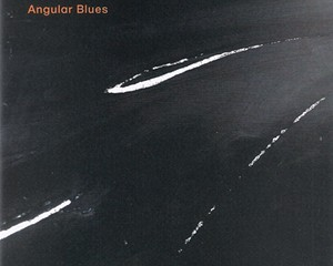 Album Review: Wolfgang Muthspiel/Scott Colley/Brian Blade | Angular Blues