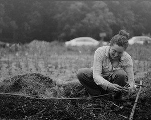 Marybeth Wehrung of Stars of the Meadow Farm in Accord has lost flower crops to both an early frost in the fall and an early thaw in the spring.