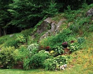 A rock garden in The Hills.