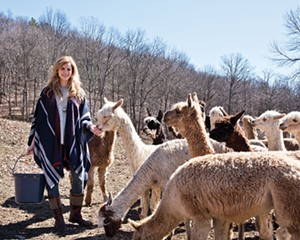 """Alicia Adams, in an alpaca wool shawl, feeding her alpaca herd. Her """"guilt-free fur"""" products are made from the animals' sheared winter coats"""