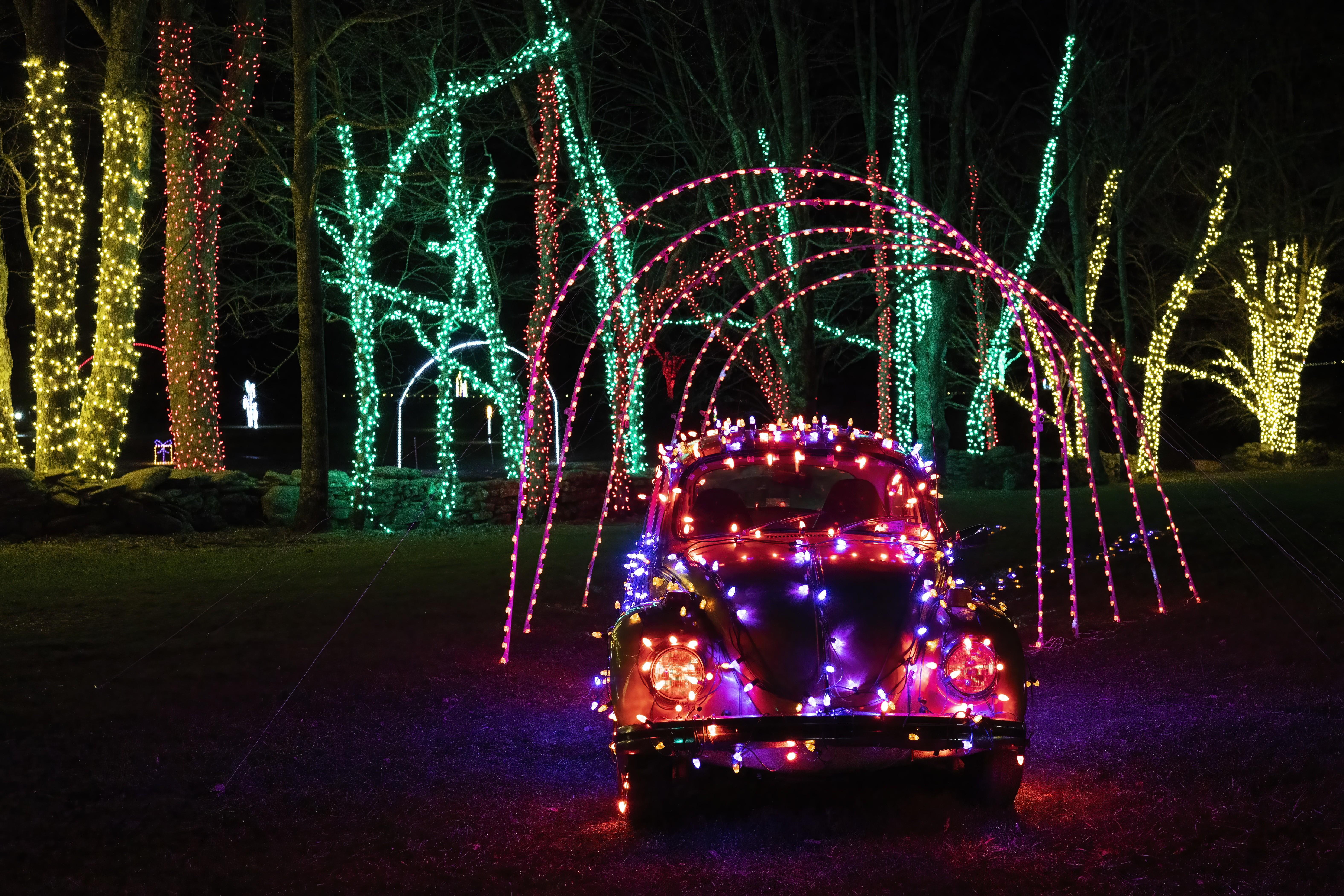 dsc3606a - Christmas Lights Spectacular Part 2 Hunter Valley Gardens 30 December