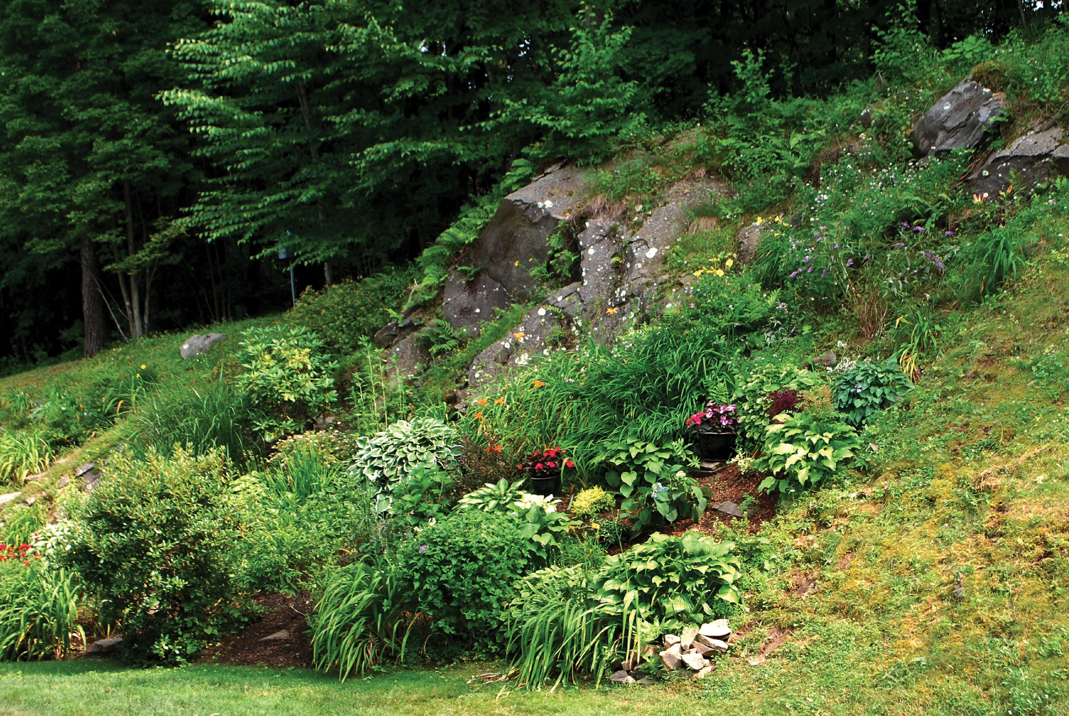Lessons from the hills gardening on rocky and steep - Gardening on slopes pictures ...