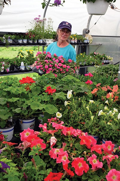 Janet Lincoln at Mac's Farm and Garden World in Rhinebeck - ROY GUMPEL