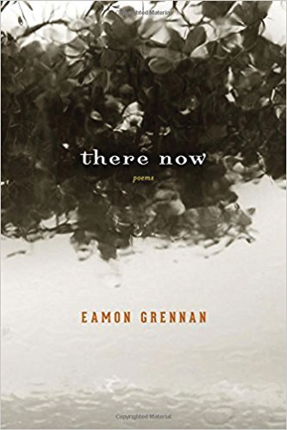 there-now_eamon-grennan.jpg