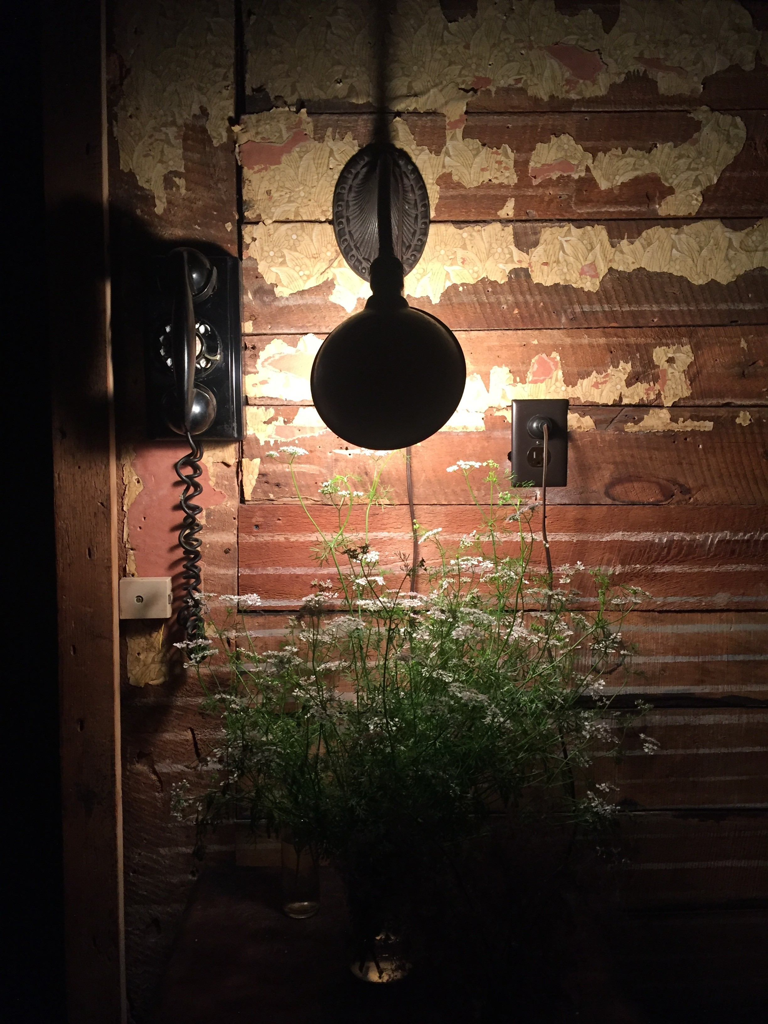 The Pines: A Mount Tremper Roadhouse Redefines Catskills ...