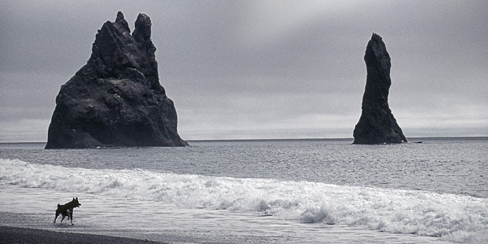 Claudia Gorman's photograph Black Sand Beach