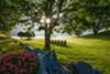 Innisfree Garden in Millbrook