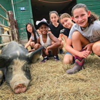 Kids' Attraction Spotlight: Catskill Animal Sanctuary