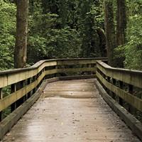 2021 Hudson Valley Summer Camps & Programs
