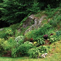 Lessons from The Hills: Gardening on Rocky and Steep Slopes
