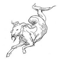 Capricorn for December 2015