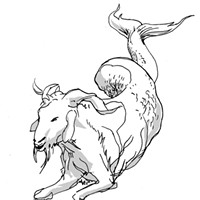 Capricorn for March 2016