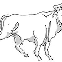 Taurus for April 2016