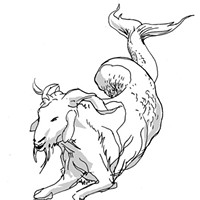 Capricorn for May 2016