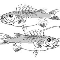 Horoscopes: Pisces