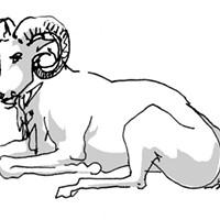 Aries Horoscope   October 2017