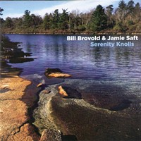 Album Review: Serenity Knolls | Bill Brovold & Jamie Saft