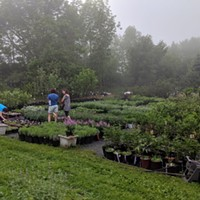 Visit Catskills Farms with Table to Farm Tours
