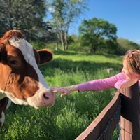 Kid-Friendly Places to Pet Animals in the Hudson Valley