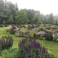 The Mountain Top Arboretum Provides Sanctuary for Native Trees and Plants