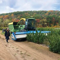 Hempire State Growers Hudson Valley Pioneer a Cooperative Model
