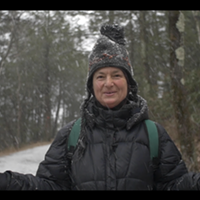 Wild For The Holidays: A New Foraging Mini-Series from Master Herbalist Dina Falconi
