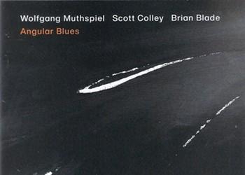 Album Review: Wolfgang Muthspiel/Scott Colley/Brian Blade   Angular Blues
