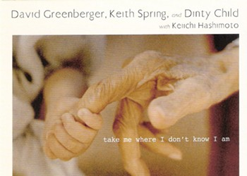 CD Review: <i> Take Me Where I Don't Know I Am </i> by David Greenberger, Keith Spring, and Dinty Child with Keiichi Hashimoto