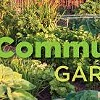 New Leaf Restoration Community Garden Info Sessions @