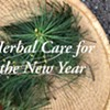 Herbal Care for the New Year @