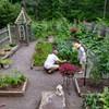 3 Class Spring Series- Creating your Organic Vegetable Garden @