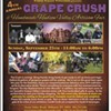 4th Annual Grape Crush & Artisan Fair @ Torne Valley Vineyards