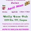 Southern Ulster County Chamber of Commerce and Esopus Business Alliance Partnered Mixer @ Molly Rose Pub