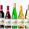 Grand Portfolio Tasting at Millbrook Vineyards & Winery @ Millbrook Vineyards