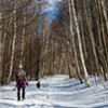 Enjoy a Snowshoe Hike Through the Birch-lined Father Loop @ Alford Springs