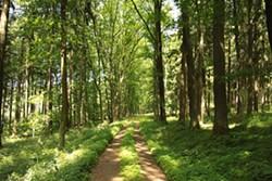 6af3e4cf_nature_park_planicky_hreben_in_2011_3-1024x683.jpg